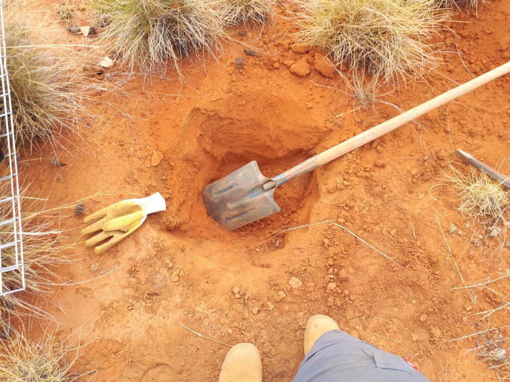 Digging, digging!